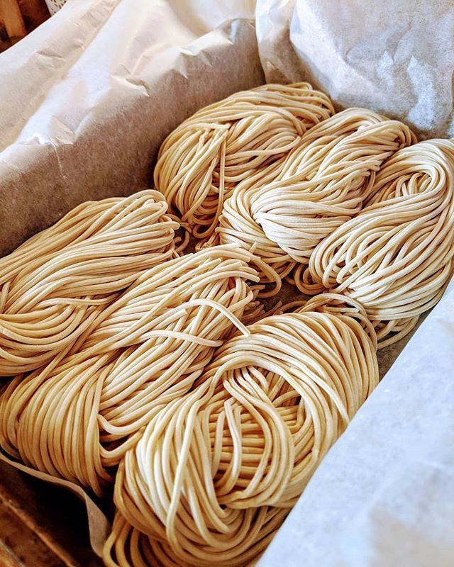 Kodawari noodle testing #kodawari #kodaw