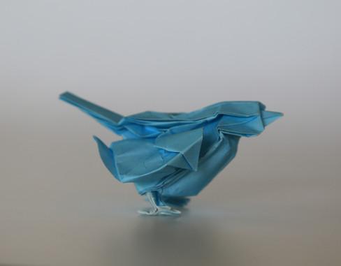 Little Bird by Satoshi Kamiya