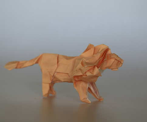 Lion by Satoshi Kamiya