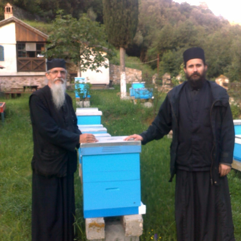 Beehives and Fr. Damaskin_edited