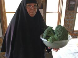 Broccoli harvest from garden!