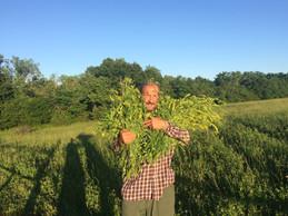 Trifun and the New Vineyard!!!