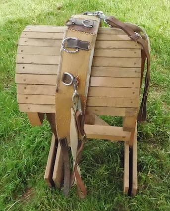 Leather Saddle Cinch