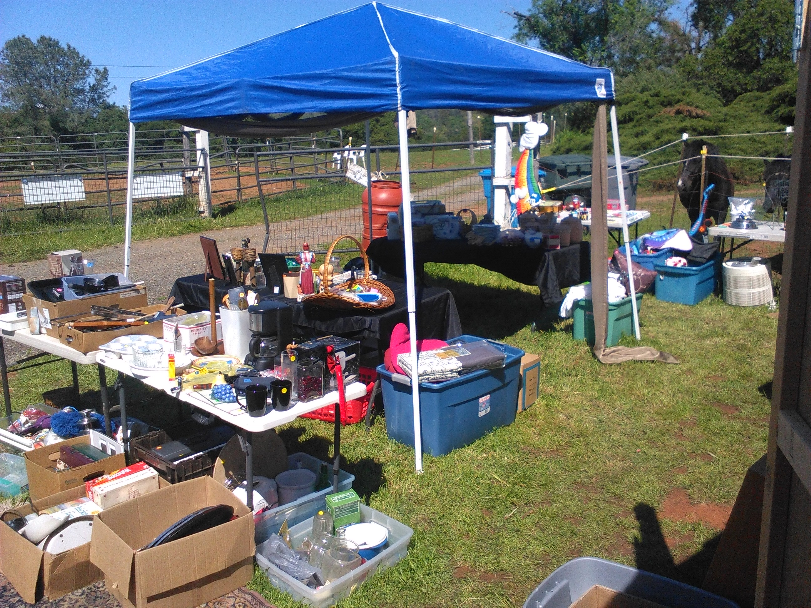 Therapy Horses Inc. Weekend Sales