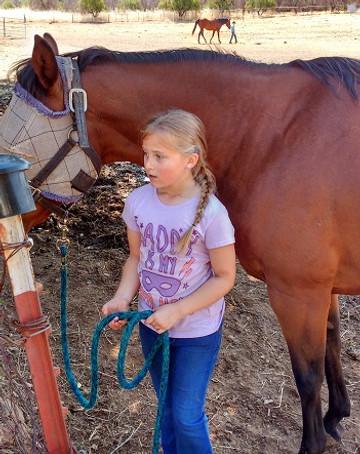 President & Steward of Horses