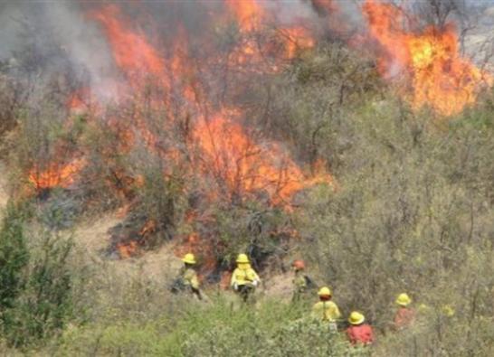 CORMA:  Después de los incendios