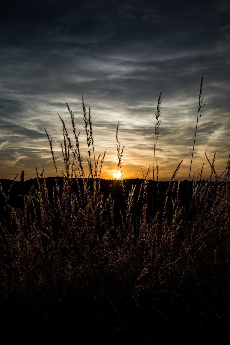 Sundown_29062015 (5 von 18)