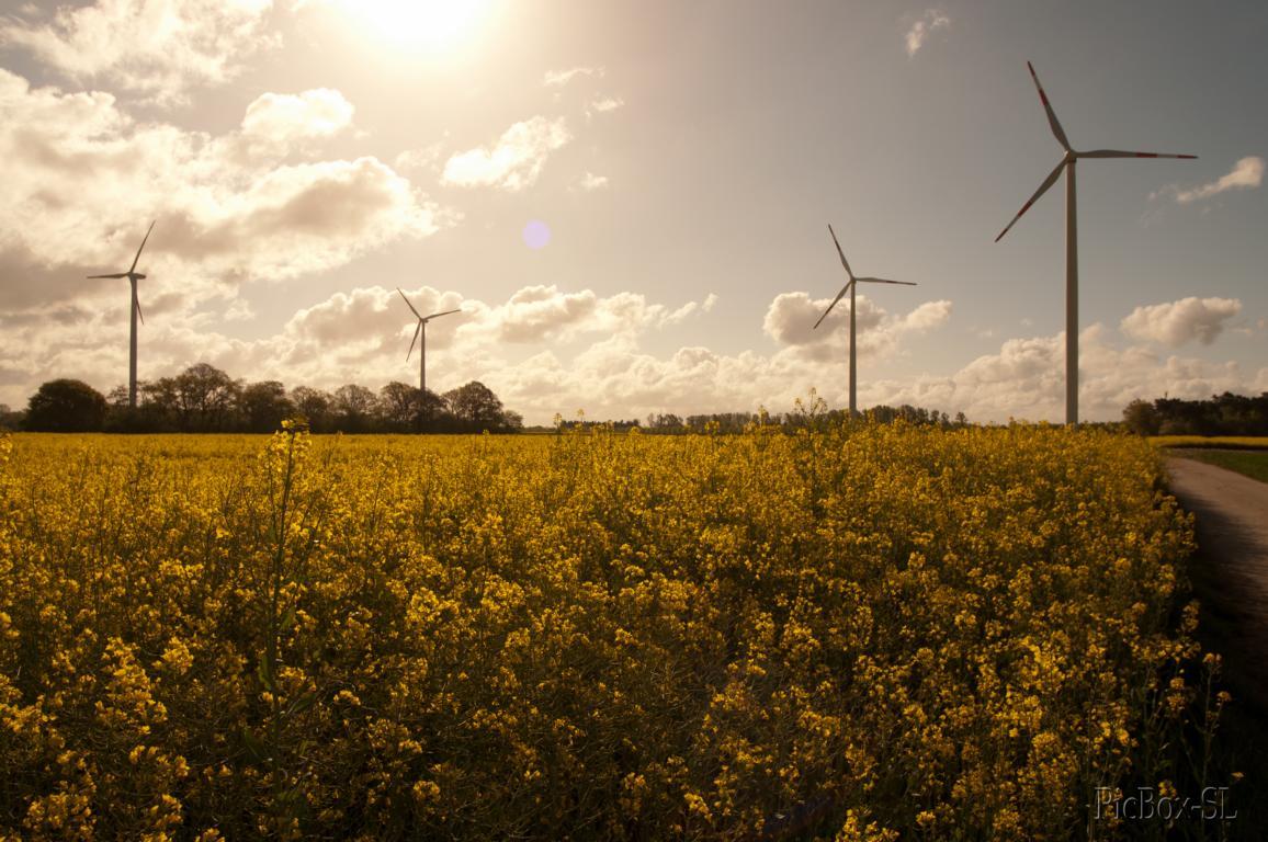 Molzmühle_Windkraftanlage_w-7