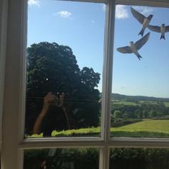 girls window.jpg