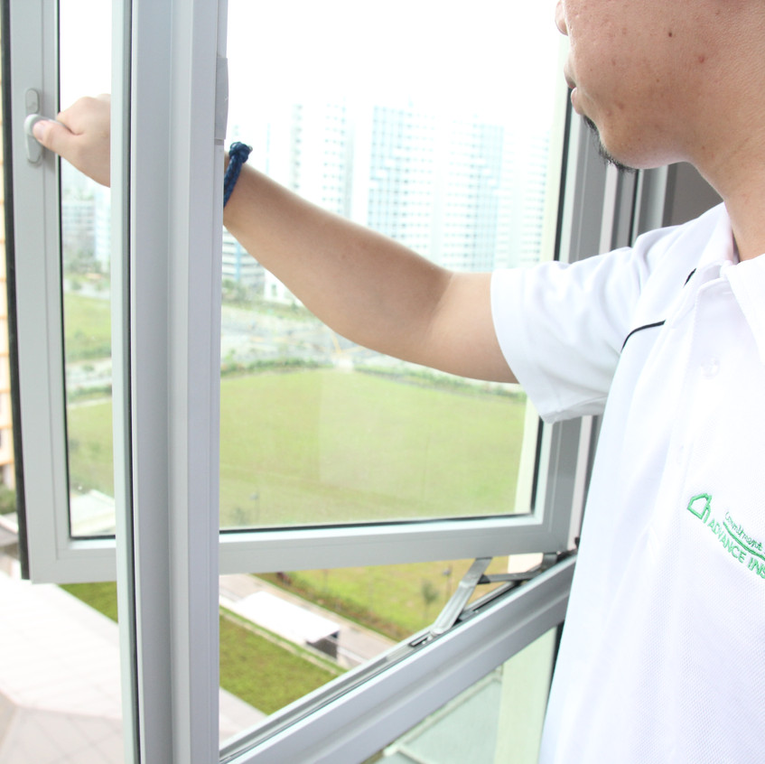 Advance Inspection - Window panel checks (8)