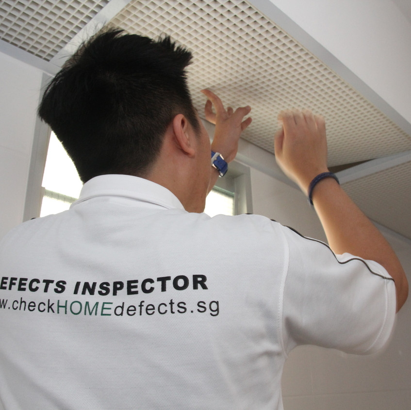 Advance Inspection - Toilet checks (4)