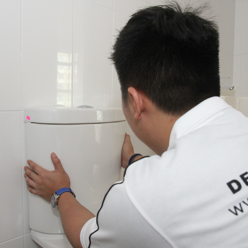 Advance Inspection - WC checks (4)