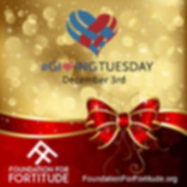 red shopping giving tuesday work 2019 B.
