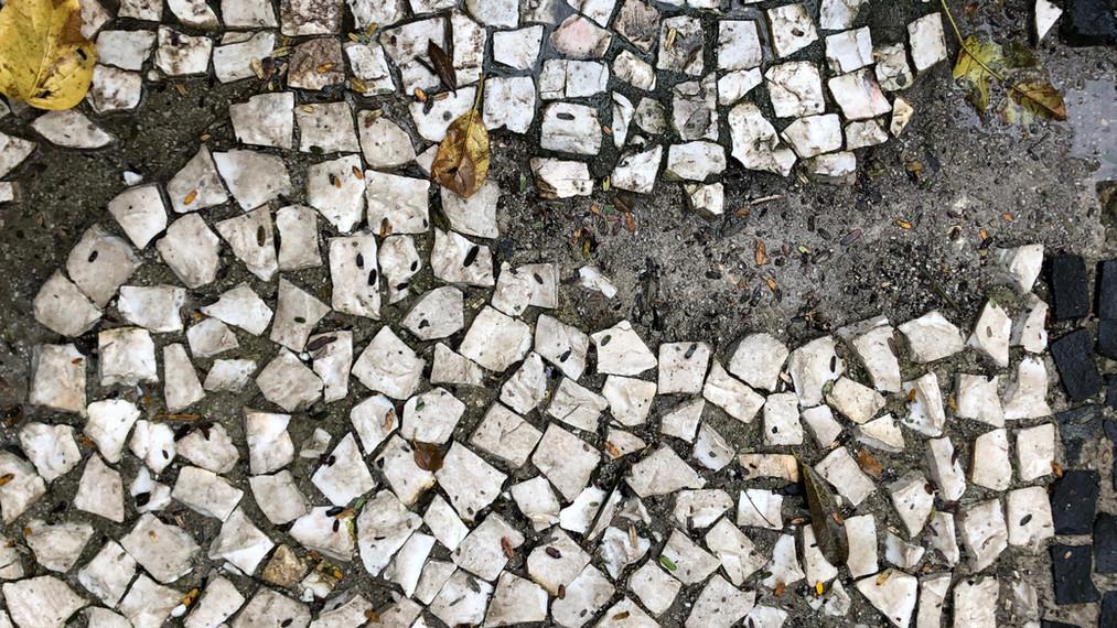 a fragilidade do petit-pavet