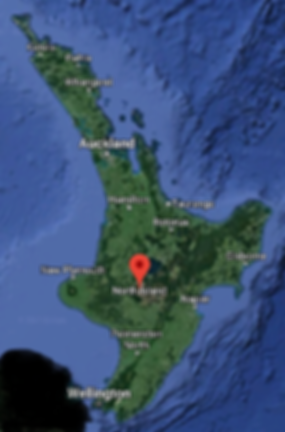 Service-areas for The Pet Nannies Ltd Pet Taxi Service North Island
