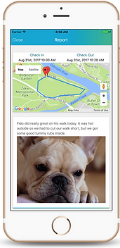 The Pet Nannies Ltd use Time to Pet Software