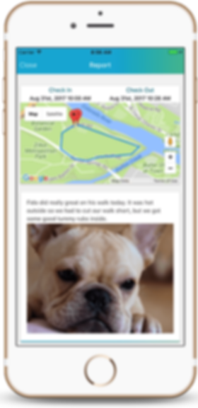 The Pet Nannies Ltd use Time to Pet Software for Pet Sitting and Dog Walking Services