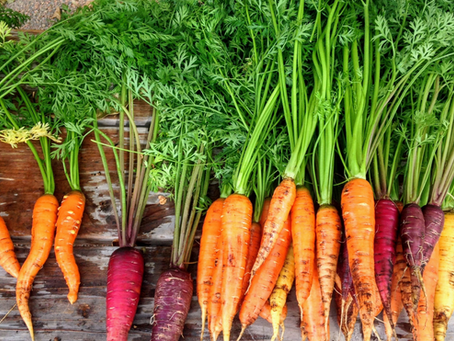 How to Grow Carrots in Central Texas