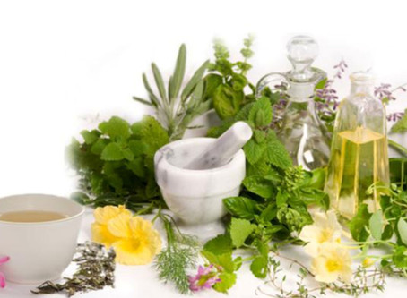 My Uses for Rosemary Essential Oil