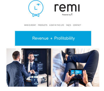 Remi Revenue And Profitability