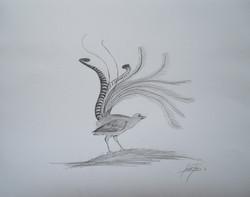 Lyrebird 2