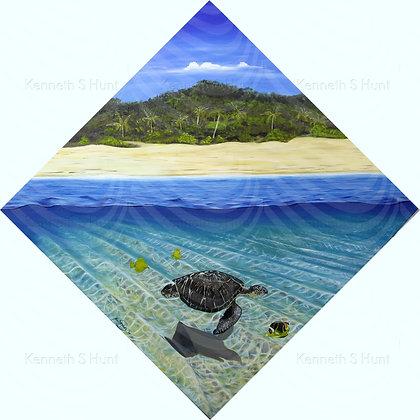 134. Turtle