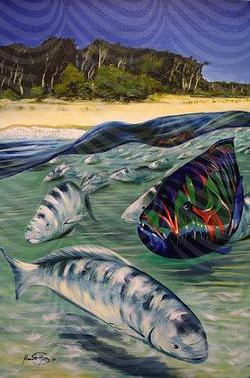 128. Phil's fish