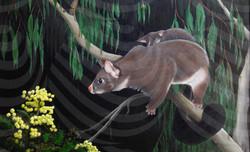 10 Marsupial Mum