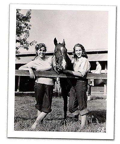 crl_f_horses.png