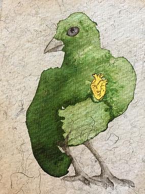 bird drawing