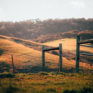 Ranch Shots-8.JPG