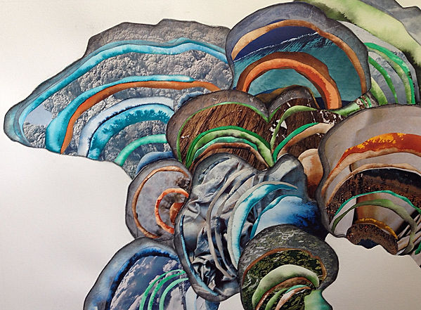 Melissa Robertson art, mushroom art, collage, drawing
