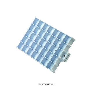 Articoli_TARTARUGA.jpg
