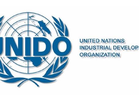 Вышло новое пособие по работе с порталом закупок ЮНИДО