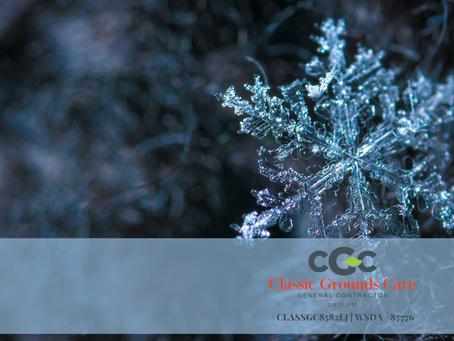 Maintain a beautiful Winter landscape