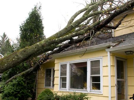 Homeowners Insurance debacle?