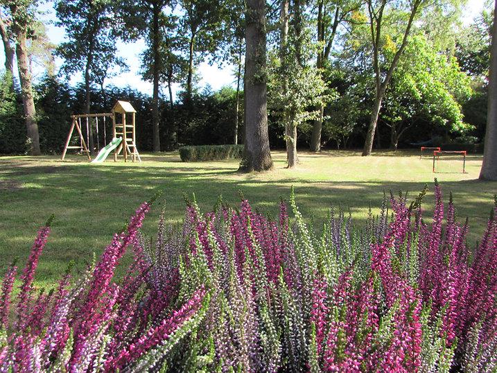 Zicht op tuin vanaf terras.JPG