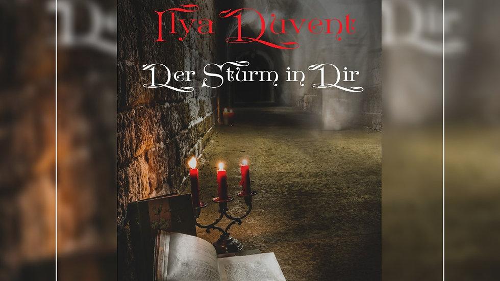 Ilya Duvent - Der Sturm in Dir - Manuela Maer