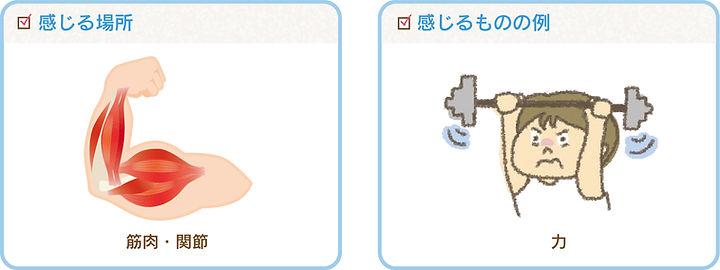 kankaku2_fact_2.jpg