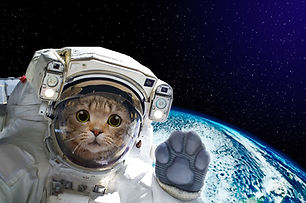 An astronaut cat in space wearing a space suit, waves in a welcome greeting