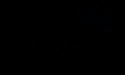 logo choletaise.png