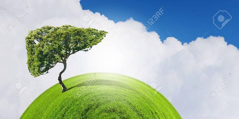 36717623-image-conceptuelle-d-arbre-vert