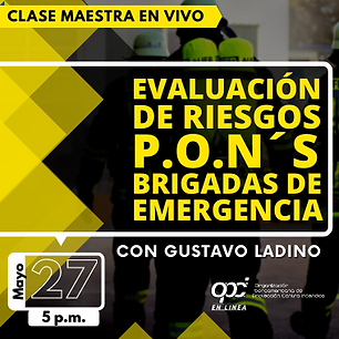 EVALUACION DE RIESGOS (PORTADA VIVO).png