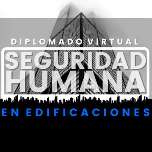 Diplomado Seguridad Humana 2021