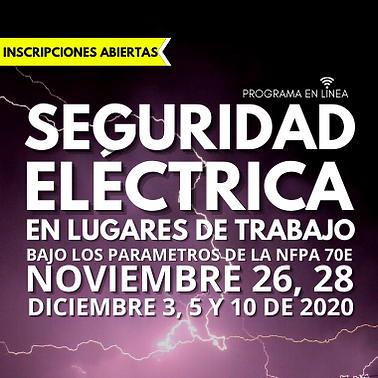 SEGURIDAD ELECTRICA PORTADA.png