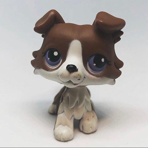 Littlest Pet Shop No # Collie: Brown and White