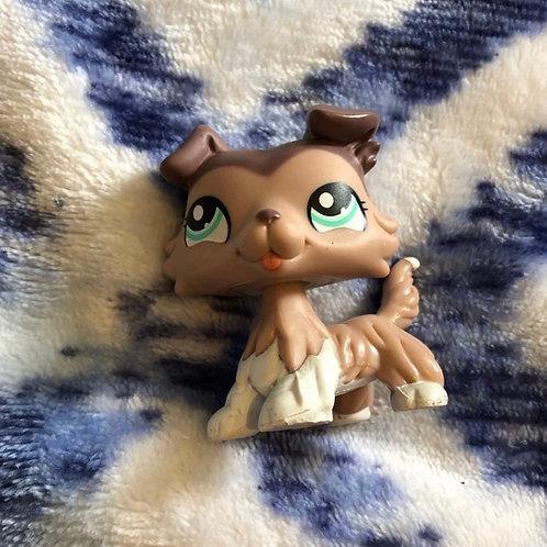 Littlest Pet Shop Collie 1330