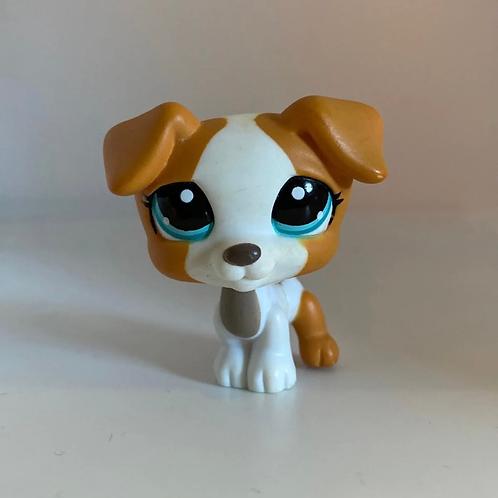 Littlest Pet Shop Jack Russell #1093