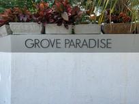 Grove paradise small