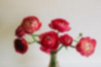 Herbs54.jpg